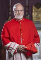 Cardinal Sean